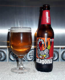 patagonia blonde south american beer