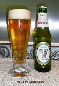 Carlsberg elephant beer Review