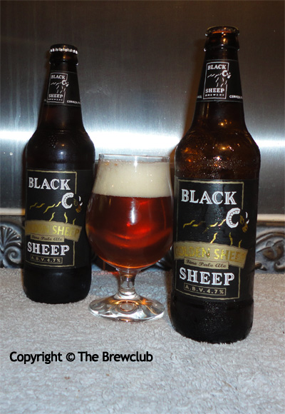 Golden Sheep Ale at The Brewclub