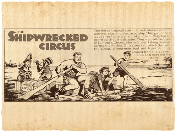 The Shipwrecked Circus from The Beano @ The Brewclub.com