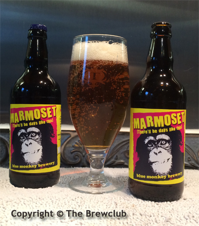 Blue Monkey Marmoset @ The Brewclub